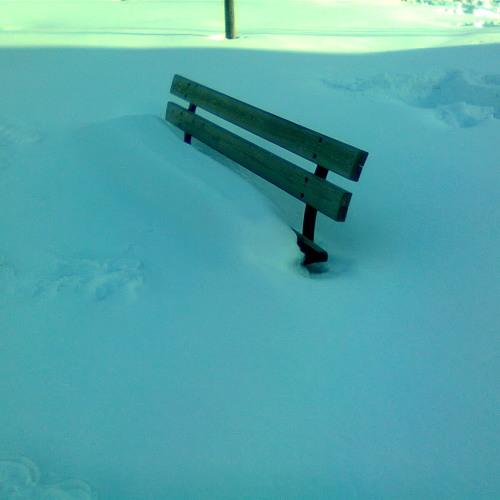 Bist - Snowy [GAMMA044]