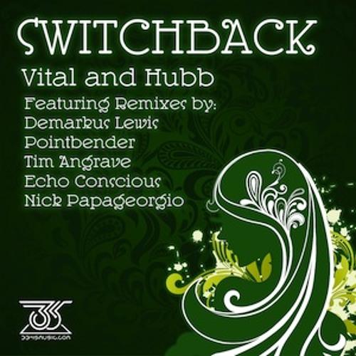 Vital and Hubb - Switchback (3345 Music)