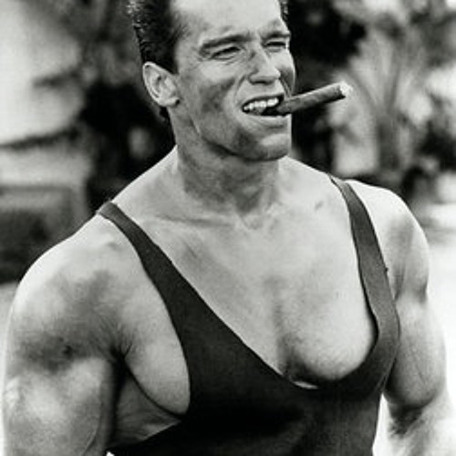 Tiesto ft. Arnold Schwarzenegger - Maximal Pumping and Cumming