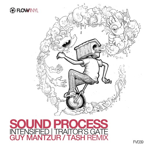 Sound Process - Traitor`s Gate ( Guy Mantzur Remix ) Low fi preview / Flow Vinyl