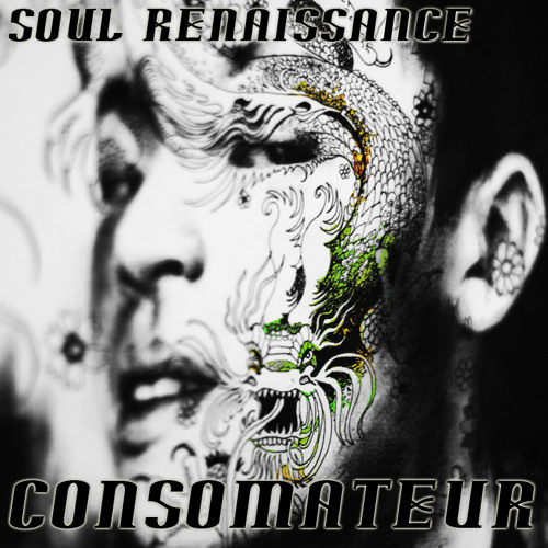 Soul Renaissance (Part 1 - Glitch)
