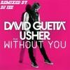 David Guetta - Without You Remix