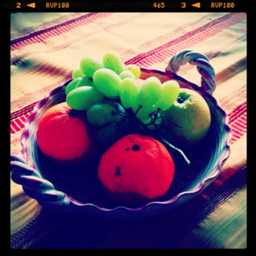 Vegetarian mind