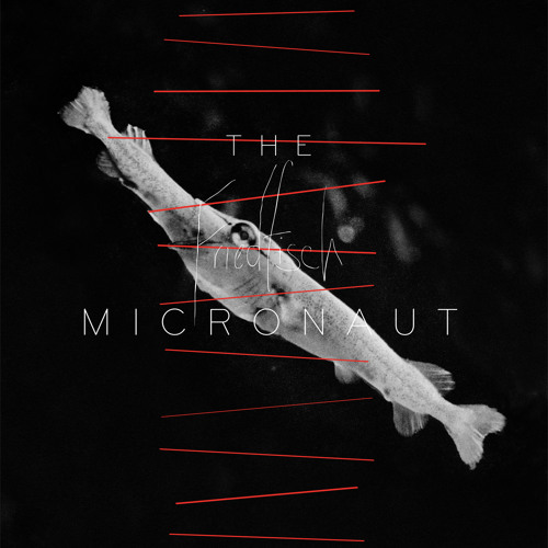 The Micronaut - Aland