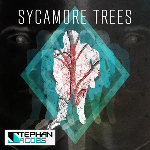 Stephan Jacobs - Sycamore Trees Video Remix [Click Buy Me Link For Video and Free Download] - 2012