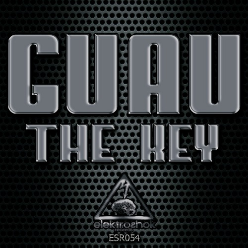 Guau - Politicks