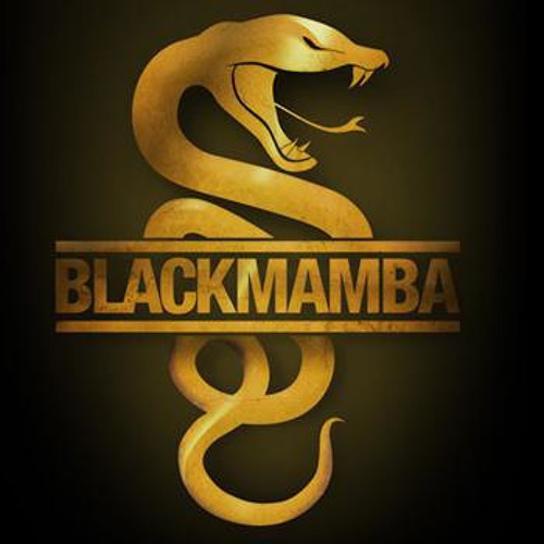 DJ Rookie - Black Mamba (Orginal Mix 2012)