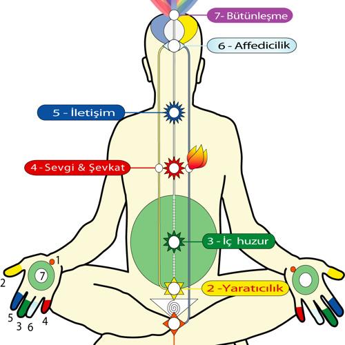 Chakraların Notaları ile Sahaja Yoga Meditasyon