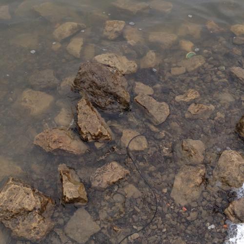 Shenango Lake - Hydrophone Test 2