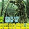 8-bit Jungle