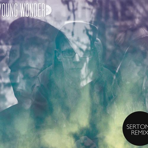 Flesh (SertOne Remix) - Young Wonder