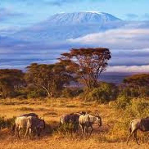 """""""Facing Kilimanjaro"""""""