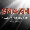 Haven't Met You Yet ft. Nick Jonas