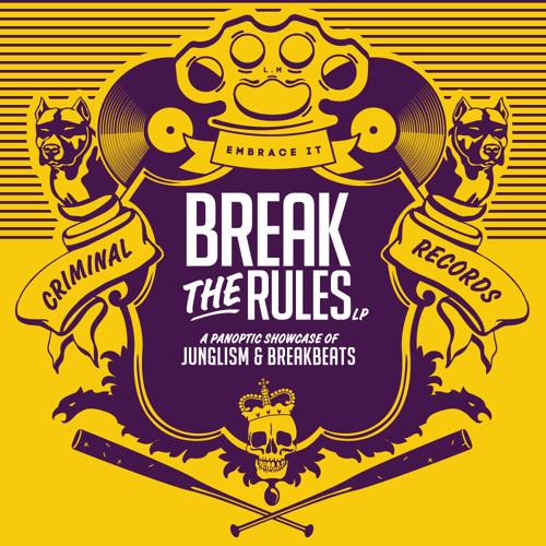"""CRIM001 - Madcap - Everyday - """"Break the Rules"""" LP"""