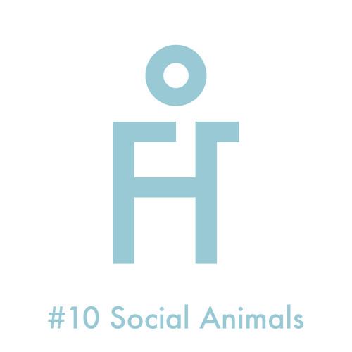 #10 Social Animals