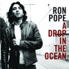Drop in the ocean- Ron Pope