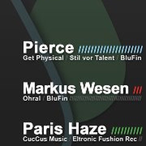 PIERCE vs. MARKUS WESEN - 4 Decks B2B @ Kunstpark Cologne 18.02.2012