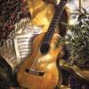 Seranade   Acoustic Instrumental