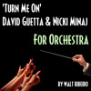 David Guetta Turn Me On Feat Nicki Minaj For Orchestra By Walt Ribeiro Mp3