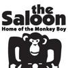 saloon 2/22 fly sugar ray