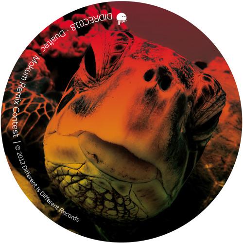 Dualtec - Mokum (Flight 19 Remix) [Different Is Different Records]
