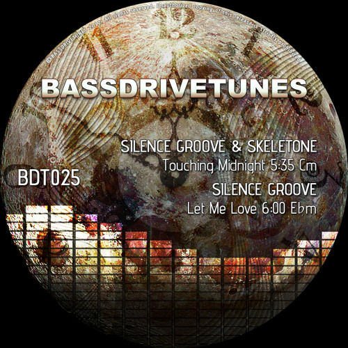 Silence Groove & Skeletone - Touching Midnight [BDT025a] preview
