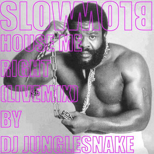 HOUSE ME RIGHT - DJ JUNGLE SNAKE