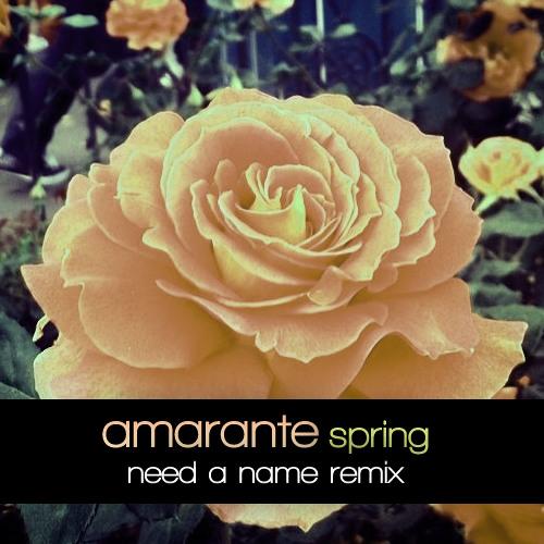 Amarante - Spring (Need a Name Remix)
