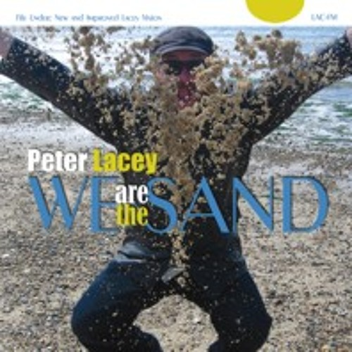 "Peter Lacey ""We are the Sand"""