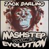 The Mashtep Evolution Volume 2
