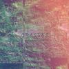 Grasses mp3