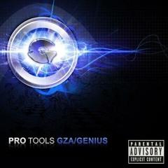 """GZA / Genius """"Alphabets"""" -Pro-Tools (2008)"""
