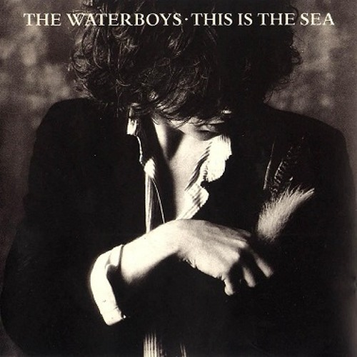 [Mick Glossop] The Waterboys - The Whole of the Moon(Co-P/E/M)