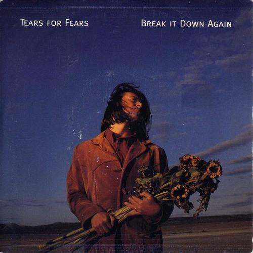 Tears For Fears - Break It Down Again (Ulisses Nunes Remix)