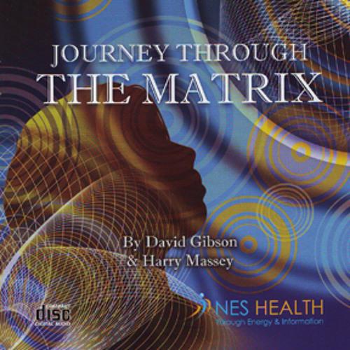 "Nutri-Energetics Systems - ""Journey Through the Matrix """