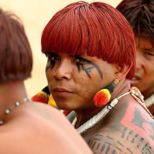 Tribal Glitch / Folktronica