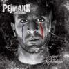 Pejmaxx Calligraphie sur Porcelaine