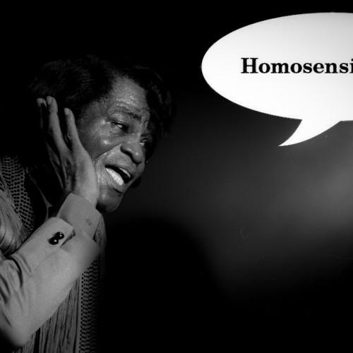 Homosensimulus - I Feel Good