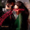 Dj somnath teri meri progressive mix