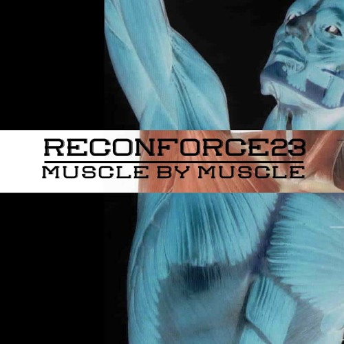 MuscleByMuscle