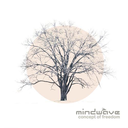 09. Mindwave - Concept Of Freedom