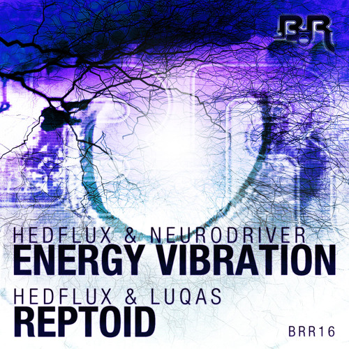 Hedflux & Neurodriver - Energy Vibration (Mouldy Soul Remix)