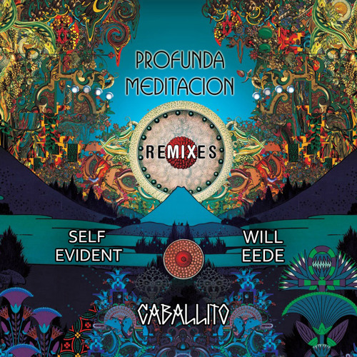 SELF EVIDENT & WILL EeDE Profundmeditation (Living~Stone Remix)
