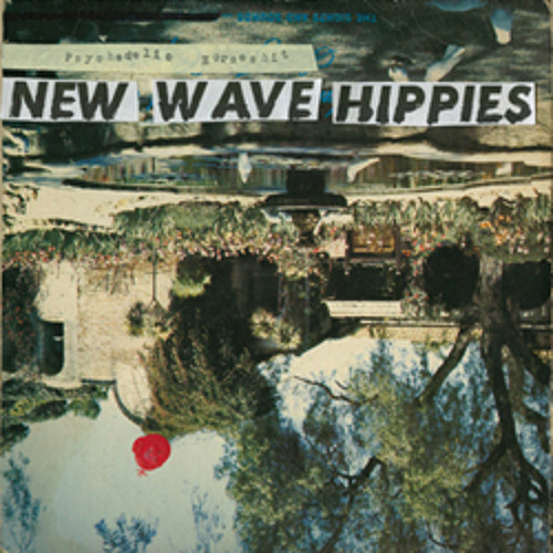 New Wave Hippies