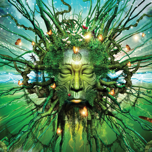 Psychosomasis  «°•Psychoactive Visions•°» (~*~)
