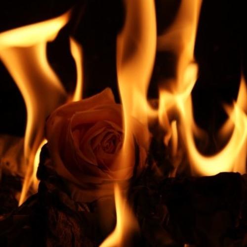 Jmin - Burning ROSE