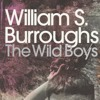 JOEBOY: Wild Boys (lyrics by W.S.Burroughs)