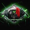 Lil Wayne & Skrillex - Cash Money Monsters (Dubstep Mashup)