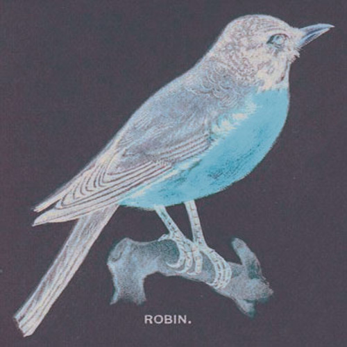 birds hate guitars (disquiet0009-avian)