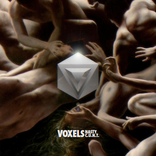 Voxels - Nasty